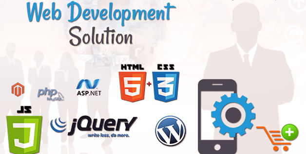 Pros of hiring a professional web development company